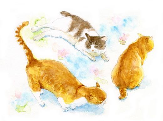 Cats07_S.jpg