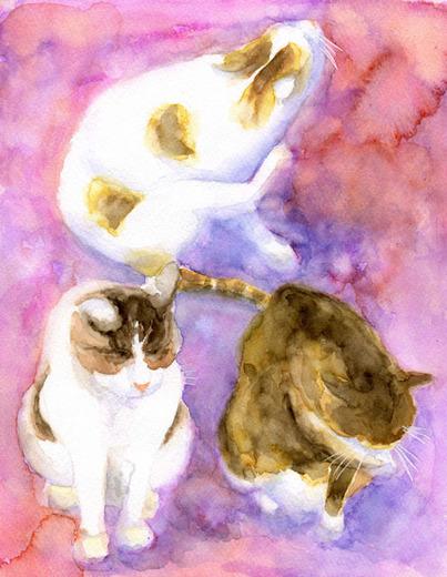 Cats08_S.jpg